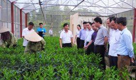 Top 2 Trung tâm giống cây trồng uy tín nhất tại Miền Bắc