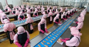 Top 4 Ngành nghề thí sinh nên chọn khi đi lao động Nhật Bản