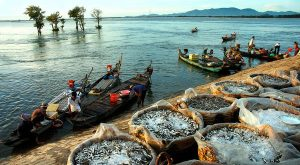 Top 5 Điểm nên đến khi bạn ghé thăm Châu Đốc -Tịnh Biên
