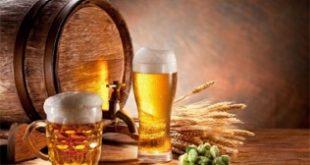 Top 9 Lợi ích bất ngờ của bia đối với sức khỏe và sắc đẹp